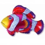 Шар Рыбка-Клоун